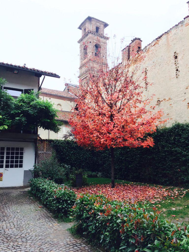 osteria-boccon-divino-courtyard