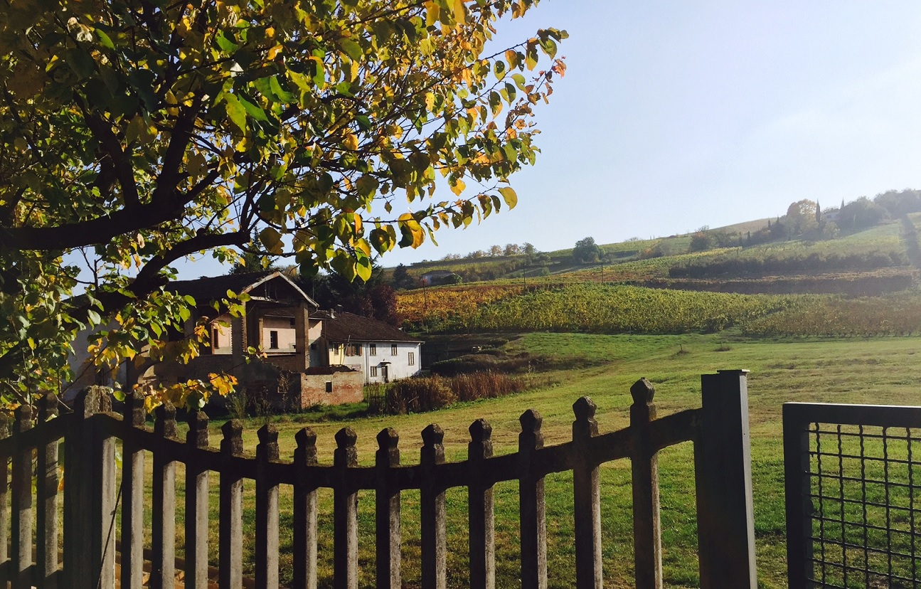 10 things to do in Piedmont- Part II